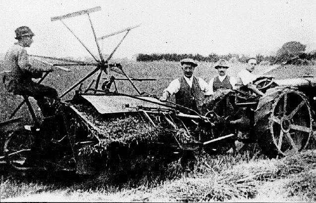 corn-cutting